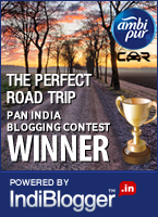 Ambi Pur Perfect Road Trip - Winner
